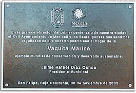 Plaque in San Felipe for the Vaquita Marina